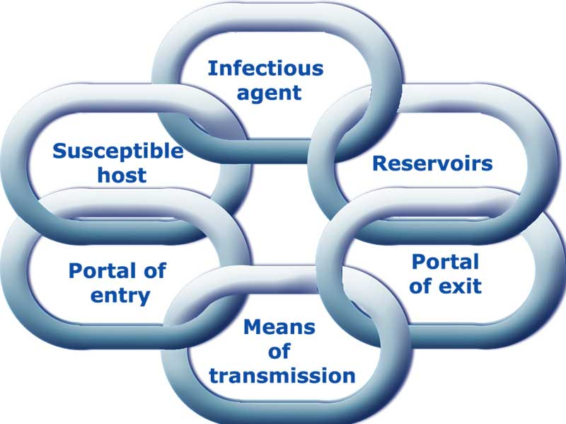 communicable disease chain Study communicable diseases flashcards at proprofs - covers communicable  diseases and the chain of infection.